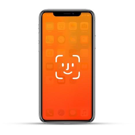 Apple iPhone 11 / 11 Pro / 11 Pro Max Reparatur Face ID