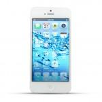 Apple iPhone 5 Reparatur Wasserschaden Behandlung White