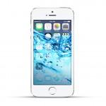 Apple iPhone 5s Reparatur Wasserschaden Behandlung White