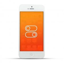 Apple iPhone 5 Reparatur Schalter White