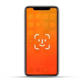 Apple iPhone X Reparatur Face ID