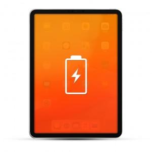 Apple iPad Pro (Alle Versionen) Reparatur Akku / Akkutausch Schwarz