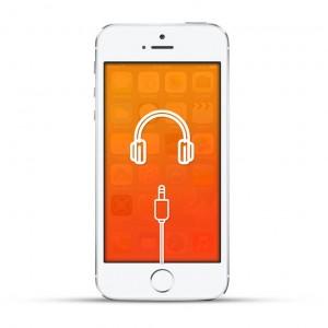 Apple iPhone 5s Reparatur Kopfhöreranschluss White
