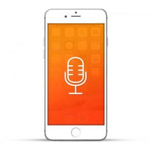 Apple iPhone 6 Plus Reparatur Mikrofon Weiss